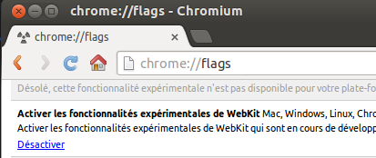 chrome://flags
